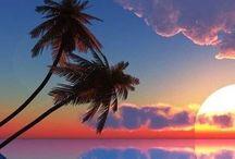 Fantasy Island / by William Perez