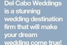 About Del Cabo Weddings / We are company based in Cabo specialized in destination weddings. Del Cabo Weddings will provide the management, expertise and peace of mind necessary to ensure that the planning and organization of your special day is seamless and enjoyable.   Find in this board our unique planning processes, get to know our team and our passion for weddings.