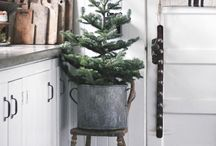 Christmas and winter interiors