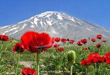 Damavand Trip / Alibabatrek's optimized trip to Mount Damavand 7,8 and 9th of August