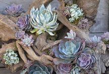 Gartengestaltung & Garten Ideen