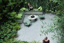 Garden oasis / Gardening / by Jody Morse