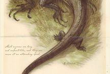 Fantastic creatures