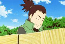 Shikamaru-kun ❤