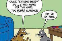energy drinks v!va energy energéticos