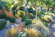Heinäpuutarha/preeriapuutarha - Grasss garden ideas