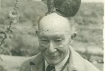 an animal on someone's head
