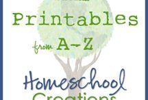 Homeschool Ideas / by Amanda Robnett Lloyd