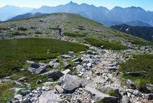 双六岳(北アルプス)登山 / 双六岳の絶景ポイント 北アルプス登山ルートガイド。Japan Alps mountain climbing route guide