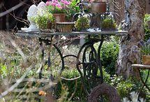Garten/ Natur