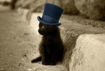 Cute! *-*