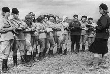 nightwitches