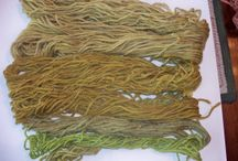 Natural dyes and inks