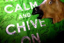 KCCO  / Keep Calm Chive On!  BFM! / by Lupita Morris