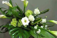terza fiori