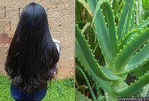 engrossar o cabelo com babosa