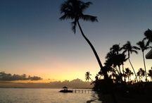 samoa fales & buses / Affordable, warm, beaches, fales Samoa