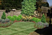 Deon backyard / Landscaping
