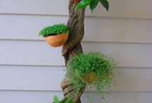 Natural container gardens