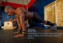Wellness: Fitness