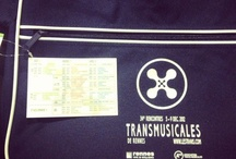 Transmusicales 2012 / #trans2012