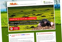 Portfolio - Seal Talpe / Our work for Seal Talpe http://www.sealtalpe.com/
