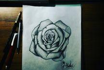 draws / my draw training work
