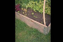 www.hadzija142.vpsite.se / Naturpreparater,urter,odling,ekologisk literatur www.hadzija142.vpsite.se lablavandaeu.wordpress.com