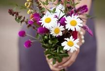 Ramos/flores / Bonitos ramos de novia