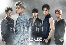 """F.Cuz / F.Cuz (Korean: 포커즈, """"Focus""""), is a South Korean boy band managed by Tunes-Will Entertainment (before 2014 by CAN Entertainment). The group made their debut on January 8, 2010 with their first single, """"Jiggy"""" on Music Bank."""