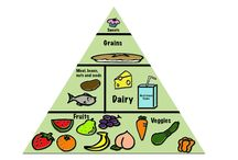Healthy Habits and Recipes