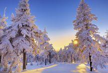 Zima / Krajobrazy zimowe