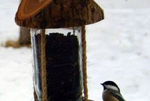 Bird feeders ideas