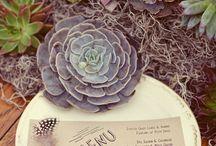 Wedding ideas / by Pixel Rocka