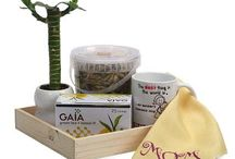 Mother's day Gift Hampers / Best gift hampers for mom on Bookmyflowers.com