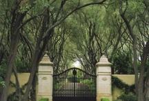 GARDEN  GATES / by NANCY ILIFF