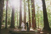 Carmel Valley Weddings