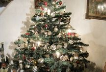 Christmas-Trees / by Carole Sklenar