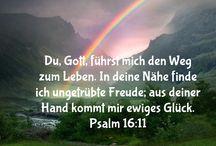 Hoffnung.Glaube.Der Weg / Faith German Bible text
