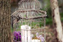 -Birdcages-