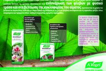 A.Vogel Aesculaforce® / Tα προϊόντα Aesculaforce της σειράς A.Vogel τα οποία αποτελούν εξαιρετικά αποτελεσματική και ασφαλή λύση για την αντιμετώπιση κιρσών, αιμορροϊδών, φλεβίτιδας, πρησμένων και κουρασμένων ποδιών και προβλημάτων στο κυκλοφορικό σύστημα γενικότερα. Τα προϊόντα Aesculaforce των οποίων η σύνθεση είναι ομοιoπαθητική, με βάση την ιπποκαστανιά (αγριοκάστανο).  http://www.avogel.gr/product-finder/avogel/aesculaforce_gel.php