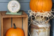 Fall/Halloween/Thanksgiving / Seasonal recipes, home decor, crafts and costumes  / by Betsy Ralph