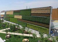 Greenwalls