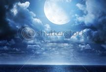 Moon Up High / by Dana Banana