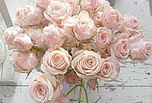 powder pink / Alles met roze