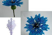 Gyöngy virágok