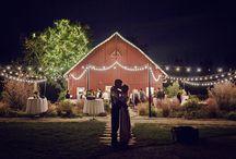 Wedding Photography Ideas / Bride Groom Portrait Poses + Bridal Party Poses