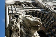 Genoa, my hometown ♡