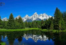 Summer in the Tetons / By far the busiest season in the Teton valley, summer is the perfect time to enjoy the rich biodiversity that makes this place so special