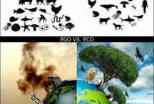 Sustainability / by Scarlett Elrod